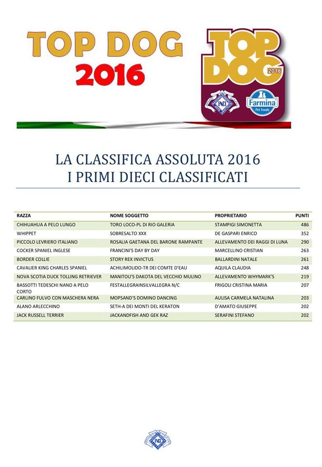 Romeo 5° classificato nella TOP TEN!
